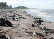 Littered Beach in Guyana